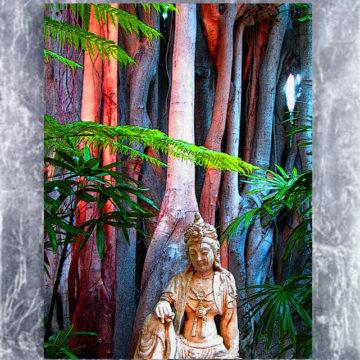 Blue Forest Buddah Framed