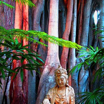 Blue Forrest Buddha