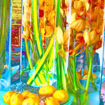Lemon Orchard III
