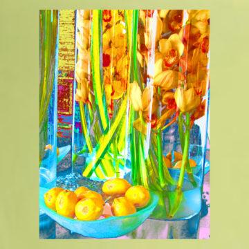 Lemon Orchid III