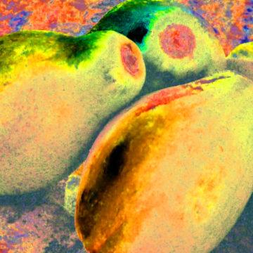 Papaya for Gauguin