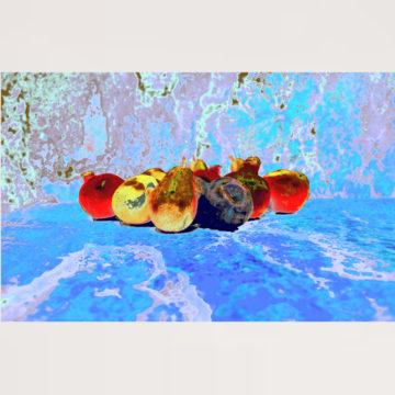 Tuti Fruiti Sur La Glace Framed