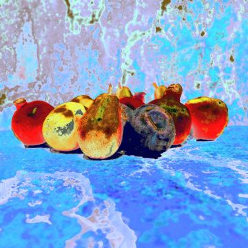 Tuti Fruti Sur la Glace