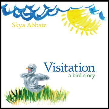Visitation CVR framed