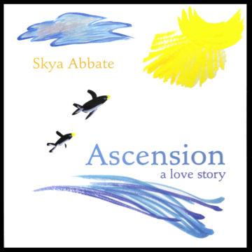 Ascension CVR framed